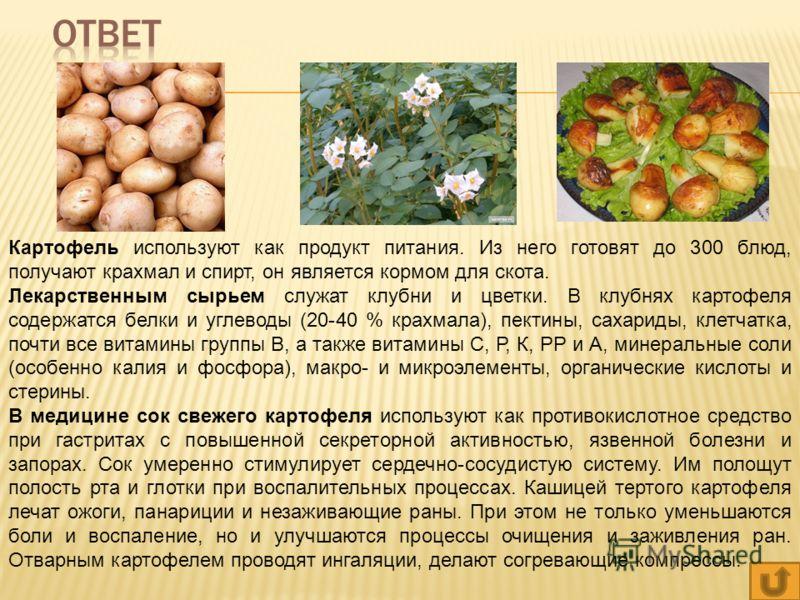 Картофель используют как продукт питания. Из него готовят до 300 блюд, получают крахмал и спирт, он является кормом для скота. Лекарственным сырьем служат клубни и цветки. В клубнях картофеля содержатся белки и углеводы (20-40 % крахмала), пектины, с
