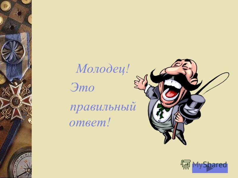 Как называлась первая улица Петрозаводска? Соборная улица Соборная улица Пробная улица Пробная улица