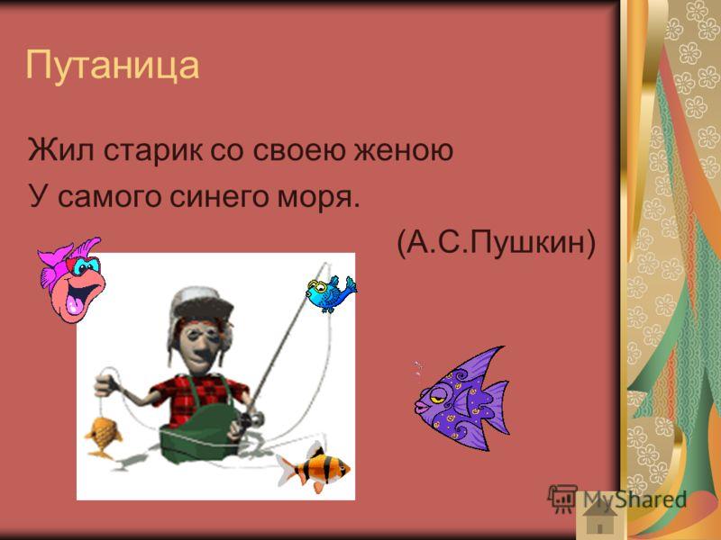 Путаница Жил старик со своею женою У самого синего моря. (А.С.Пушкин)
