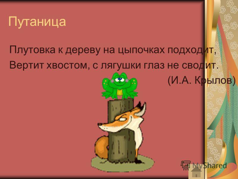 Путаница Плутовка к дереву на цыпочках подходит, Вертит хвостом, с лягушки глаз не сводит. (И.А. Крылов)