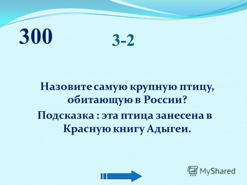 3-1 Как по пню срубленного дерева узнать, сколько ему лет? 300