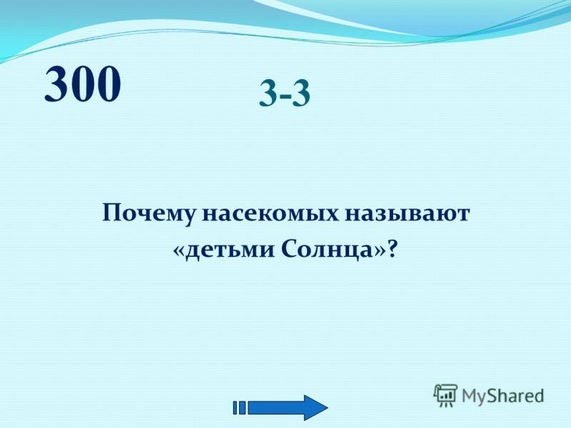 3-2 Назовите самую крупную птицу, обитающую в России? Подсказка : эта птица занесена в Красную книгу Адыгеи. 300