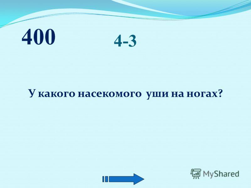 4-2 Когда температура тела у воробья выше – зимой или летом? 400