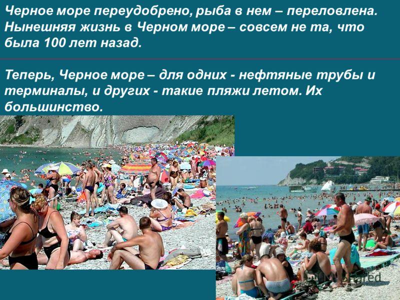 Черное море переудобрено, рыба в нем – переловлена. Нынешняя жизнь в Черном море – совсем не та, что была 100 лет назад. Теперь, Черное море – для одних - нефтяные трубы и терминалы, и других - такие пляжи летом. Их большинство.