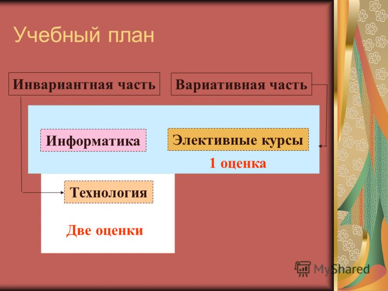 Учебный план Инвариантная часть Вариативная часть Информатика Технология Элективные курсы Две оценки 1 оценка