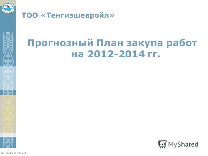© Tengizchevroil 2012 Прогнозный План закупа работ на 2012-2014 гг. ТОО «Тенгизшевройл»