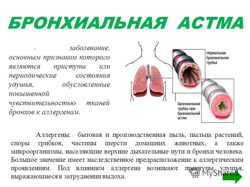 БРОНХИАЛЬНАЯ АСТМА - заболевание, основным признаком которого являются приступы или периодические состояния удушья, обусловленные повышенной чувствительностью тканей бронхов к аллергенам. Аллергены: бытовая и производственная пыль, пыльца растений, с