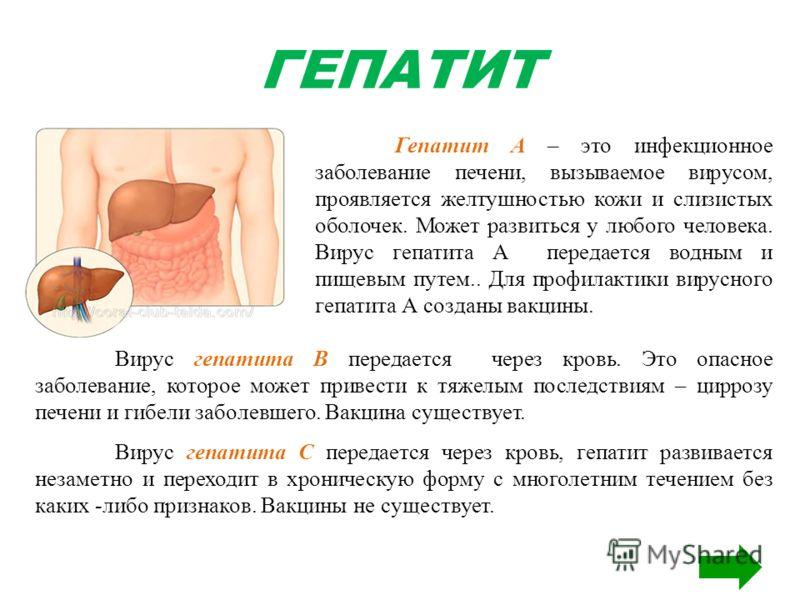 ГЕПАТИТ Гепатит А – это инфекционное заболевание печени, вызываемое вирусом, проявляется желтушностью кожи и слизистых оболочек. Может развиться у любого человека. Вирус гепатита А передается водным и пищевым путем.. Для профилактики вирусного гепати