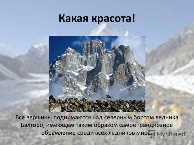 Какая красота! Все вершины поднимаются над северным бортом ледника Балторо, имеющем таким образом самое грандиозное обрамление среди всех ледников мира.