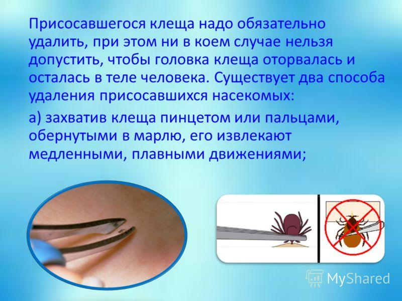 Присосавшегося клеща надо обязательно удалить, при этом ни в коем случае нельзя допустить, чтобы головка клеща оторвалась и осталась в теле человека. Существует два способа удаления присосавшихся насекомых: а) захватив клеща пинцетом или пальцами, об