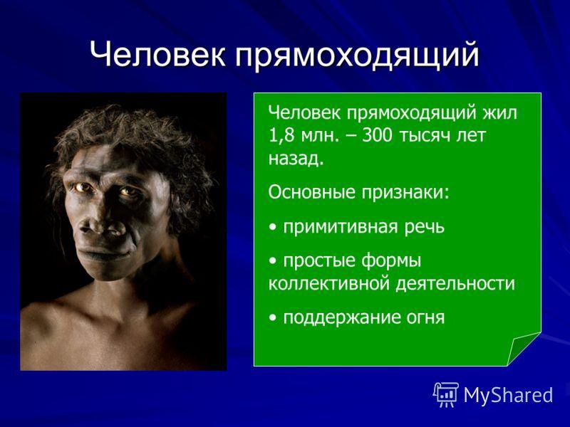 Человек прямоходящий Человек прямоходящий жил 1,8 млн. – 300 тысяч лет назад. Основные признаки: примитивная речь простые формы коллективной деятельности поддержание огня