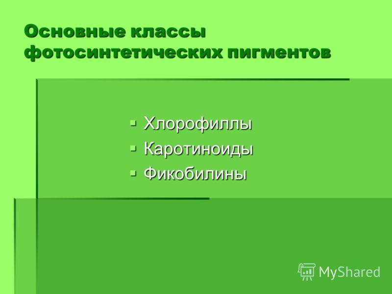 Основные классы фотосинтетических пигментов Хлорофиллы Хлорофиллы Каротиноиды Каротиноиды Фикобилины Фикобилины