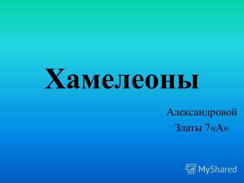 Хамелеоны Александровой Златы 7«А»