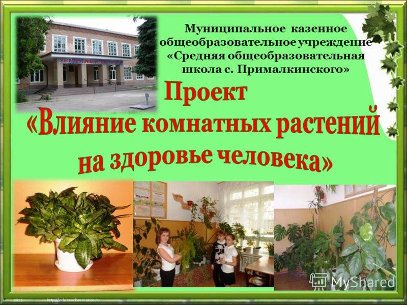 Муниципальное казенное общеобразовательное учреждение «Средняя общеобразовательная школа с. Прималкинского»