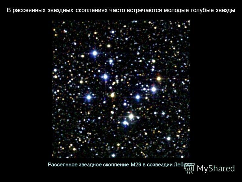 В рассеянных звездных скоплениях часто встречаются молодые голубые звезды Рассеянное звездное скопление М29 в созвездии Лебедя