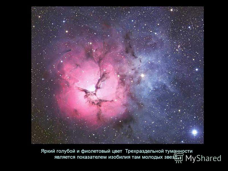 Яркий голубой и фиолетовый цвет Трехраздельной туманности является показателем изобилия там молодых звезд.