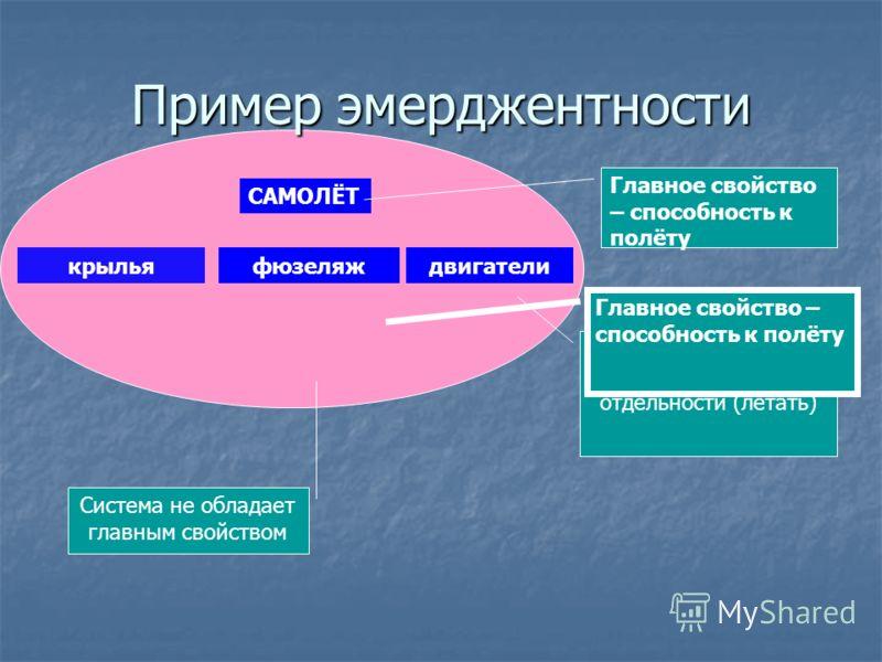 Пример эмерджентности САМОЛЁТ Главное свойство – способность к полёту крыльяфюзеляждвигатели Не обладают главным свойством системы в отдельности (летать) Главное свойство – способность к полёту Система не обладает главным свойством