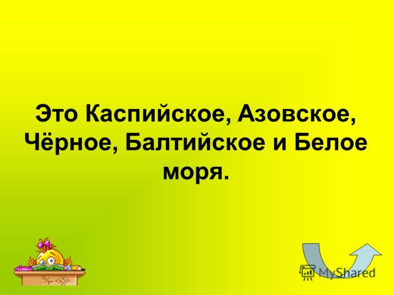 Это Каспийское, Азовское, Чёрное, Балтийское и Белое моря.