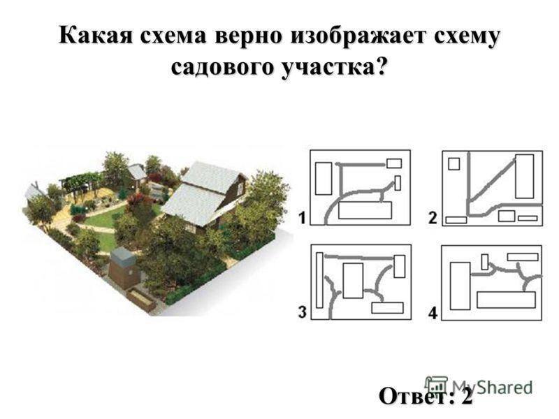 Какая схема верно изображает схему садового участка? Ответ: 2