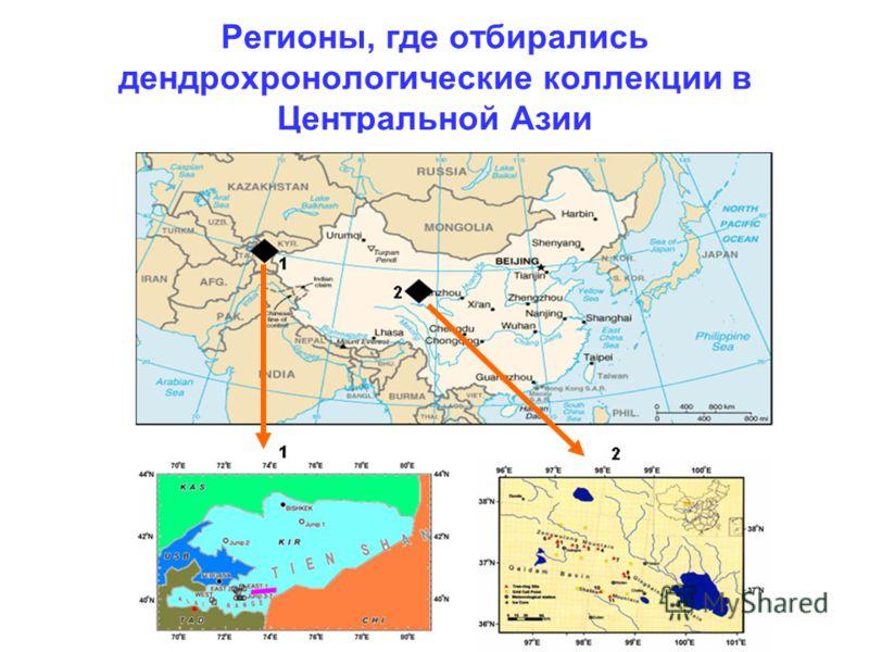 Регионы, где отбирались дендрохронологические коллекции в Центральной Азии