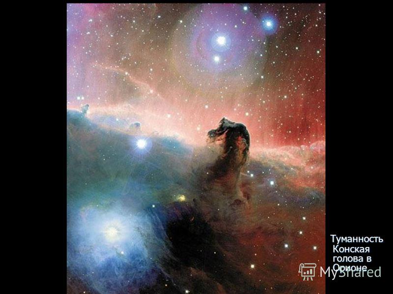 Туманность Конская голова в Орионе Туманность Конская голова в Орионе