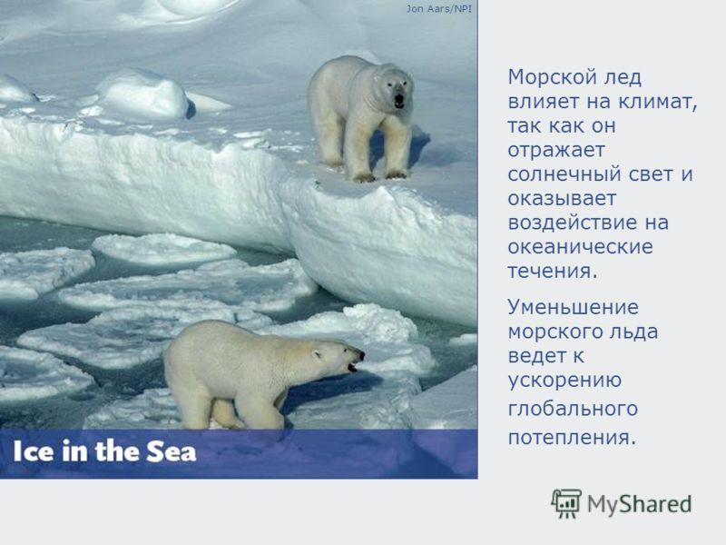 Jon Aars/NPI Морской лед влияет на климат, так как он отражает солнечный свет и оказывает воздействие на океанические течения. Уменьшение морского льда ведет к ускорению глобального потепления.