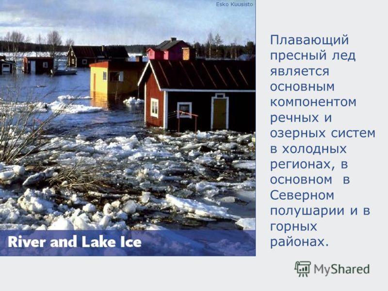 Esko Kuusisto Плавающий пресный лед является основным компонентом речных и озерных систем в холодных регионах, в основном в Северном полушарии и в горных районах.