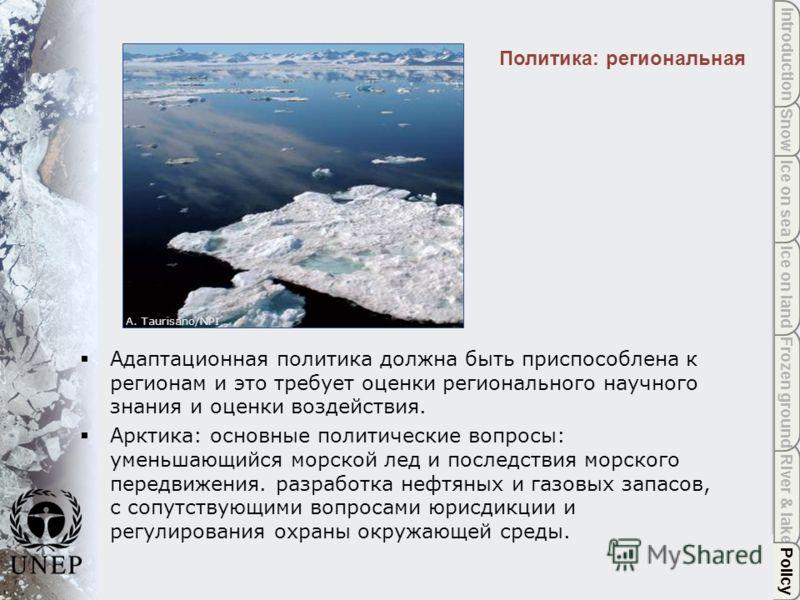 Policy River & lake Frozen ground Ice on land Ice on sea Snow Introduction Политика: региональная A. Taurisano/NPI Policy Адаптационная политика должна быть приспособлена к регионам и это требует оценки регионального научного знания и оценки воздейст