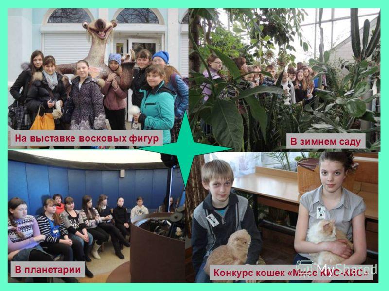 В планетарии На выставке восковых фигур В зимнем саду Конкурс кошек «Мисс КИС-КИС»