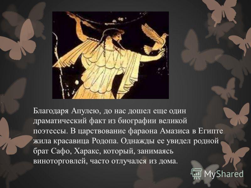 Благодаря Апулею, до нас дошел еще один драматический факт из биографии великой поэтессы. В царствование фараона Амазиса в Египте жила красавица Родопа. Однажды ее увидел родной брат Сафо, Харакс, который, занимаясь виноторговлей, часто отлучался из