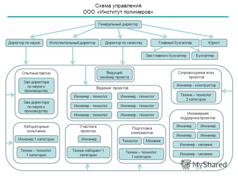 Схема управления ООО «Институт