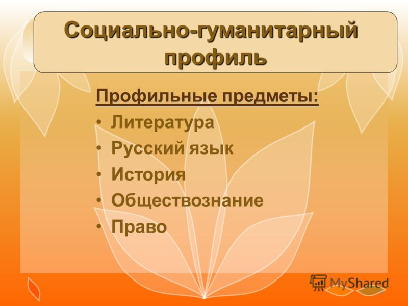 9 Социально-гуманитарныйпрофиль Профильные предметы: Литература Русский язык История Обществознание Право