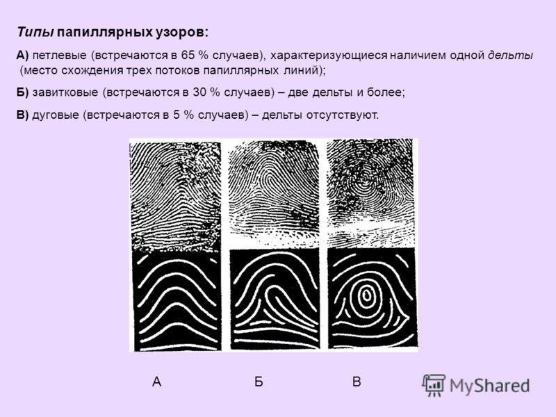Типы папиллярных узоров: А) петлевые (встречаются в 65 % случаев), характеризующиеся наличием одной дельты (место схождения трех потоков папиллярных линий); Б) завитковые (встречаются в 30 % случаев) – две дельты и более; В) дуговые (встречаются в 5