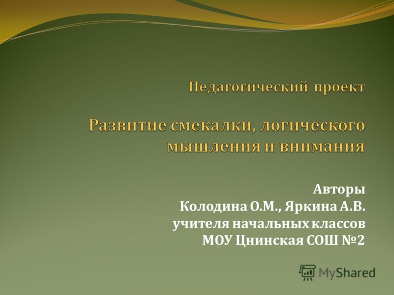 Авторы Колодина О. М., Яркина А. В. учителя начальных классов МОУ Цнинская СОШ 2