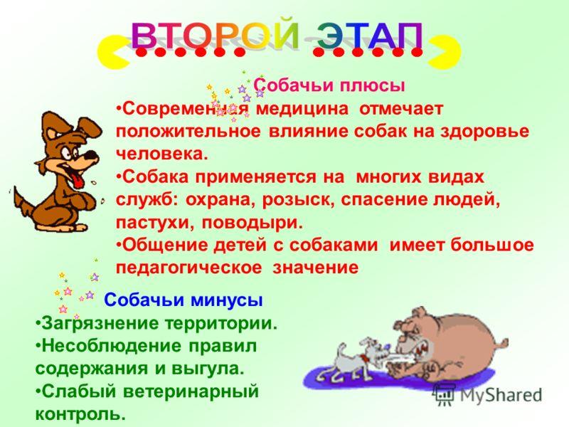 Собачьи минусы Загрязнение территории. Несоблюдение правил содержания и выгула. Слабый ветеринарный контроль. Собачьи плюсы Современная медицина отмечает положительное влияние собак на здоровье человека. Собака применяется на многих видах служб: охра