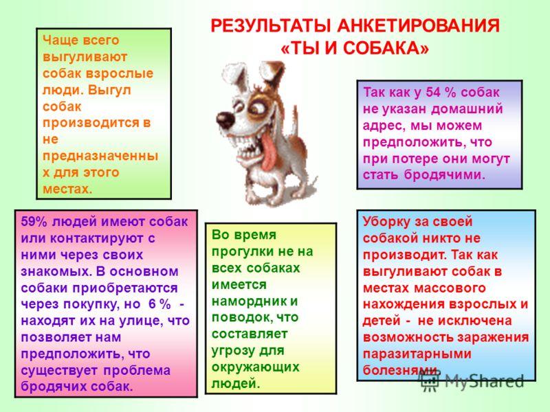 59% людей имеют собак или контактируют с ними через своих знакомых. В основном собаки приобретаются через покупку, но 6 % - находят их на улице, что позволяет нам предположить, что существует проблема бродячих собак. Во время прогулки не на всех соба