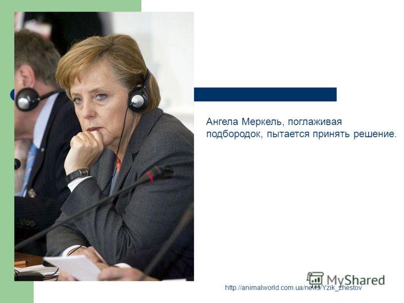http://animalworld.com.ua/news/Yzik_zhestov Ангела Меркель, поглаживая подбородок, пытается принять решение.