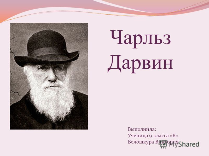 Чарльз Дарвин Выполнила: Ученица 9 класса «В» Белошкура Виктория