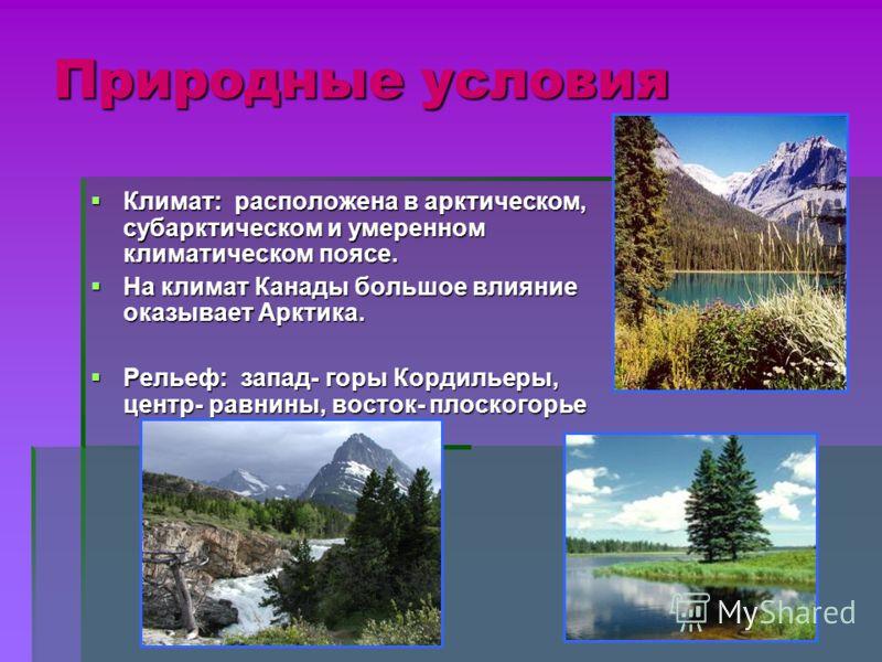 Природные условия Климат: расположена в арктическом, субарктическом и умеренном климатическом поясе. Климат: расположена в арктическом, субарктическом и умеренном климатическом поясе. На климат Канады большое влияние оказывает Арктика. На климат Кана