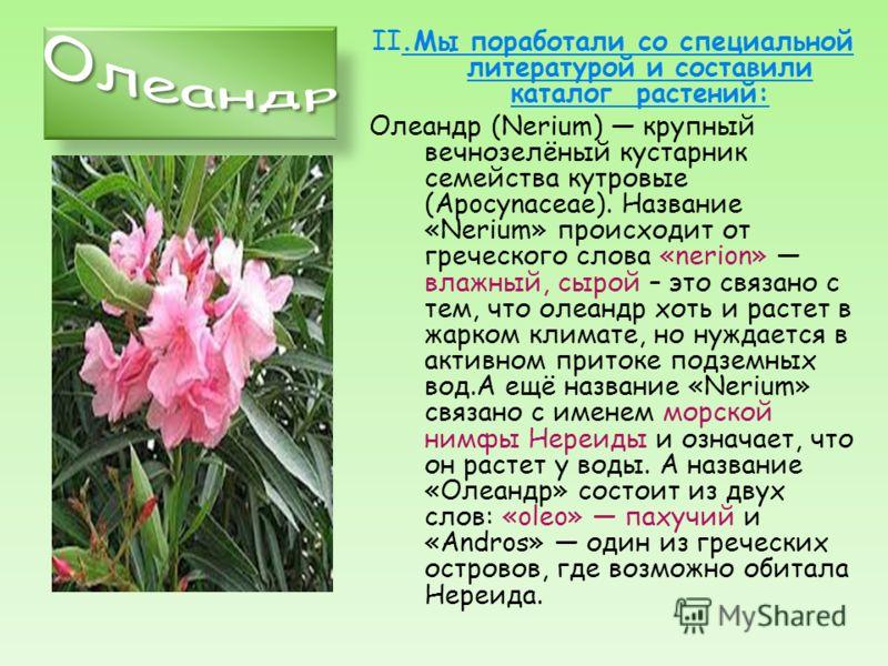I. Для того, чтобы выяснить, какие виды растений есть на территории нашего Посольства, мы отправились на экскурсию с учителем биологии Широбоковым Е.М.