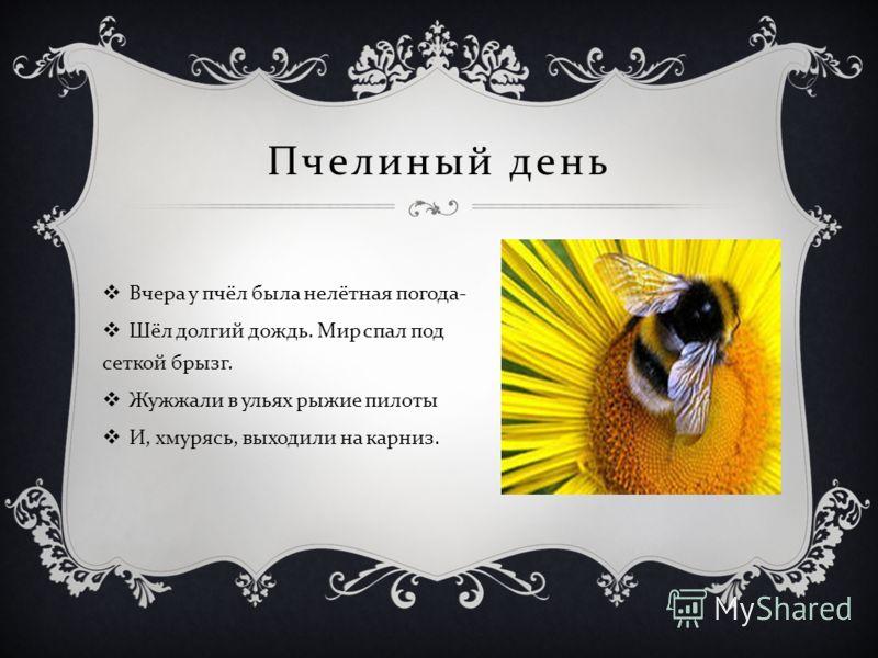 Пчелиный день Вчера у пчёл была нелётная погода - Шёл долгий дождь. Мир спал под сеткой брызг. Жужжали в ульях рыжие пилоты И, хмурясь, выходили на карниз.