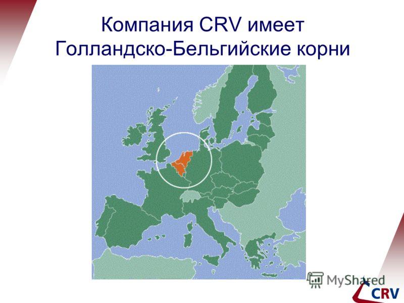 Компания CRV имеет Голландско-Бельгийские корни