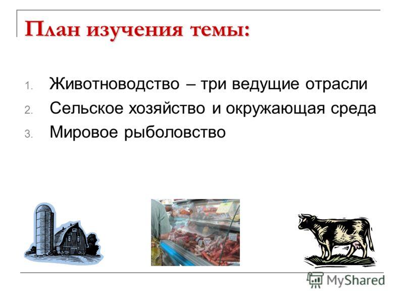 План изучения темы: 1. Животноводство – три ведущие отрасли 2. Сельское хозяйство и окружающая среда 3. Мировое рыболовство