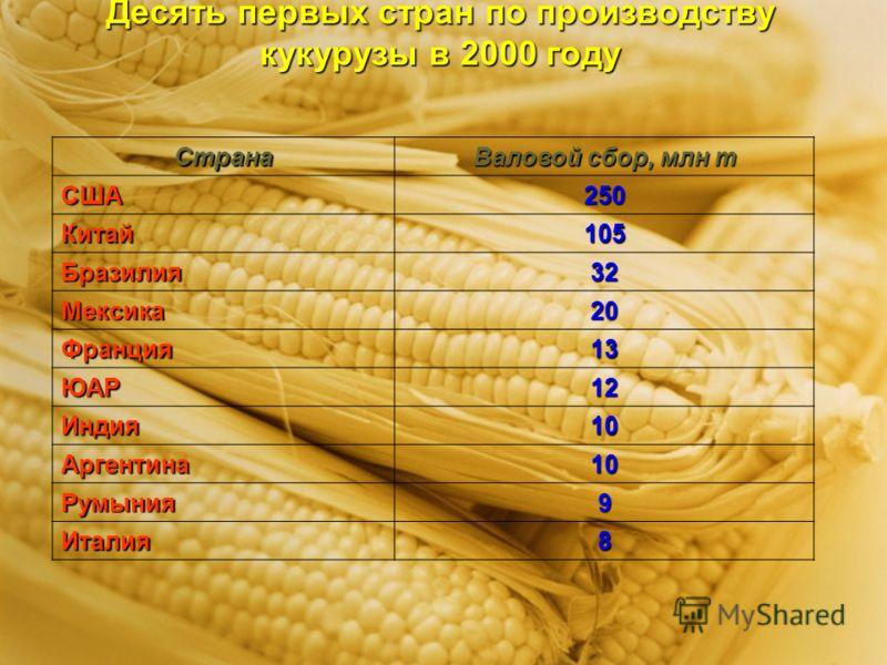 Десять первых стран по производству кукурузы в 2000 году Страна Валовой сбор, млн т США250 Китай105 Бразилия32 Мексика20 Франция13 ЮАР12 Индия10 Аргентина10 Румыния9 Италия8