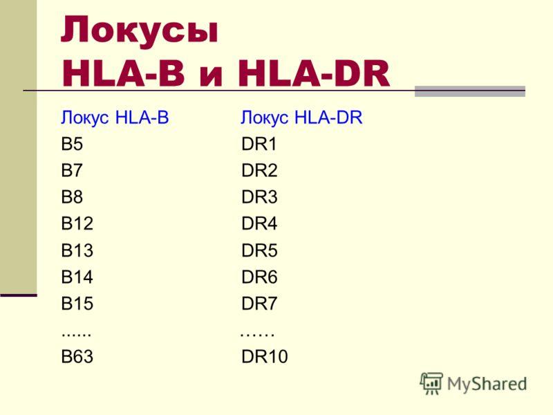 Локусы HLA-B и HLA-DR Локус HLA-B Локус HLA-DR B5 DR1 B7 DR2 B8 DR3 B12 DR4 B13 DR5 B14 DR6 B15 DR7...... …… B63 DR10