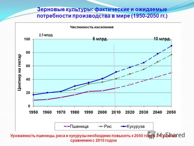 Зерновые культуры: фактические и ожидаемые потребности производства в мире (1950-2050 гг.) 6 млрд.10 млрд. Урожайность пшеницы, риса и кукурузы необходимо повысить к 2050 году в 3-4 раза по сравнению с 2010 годом