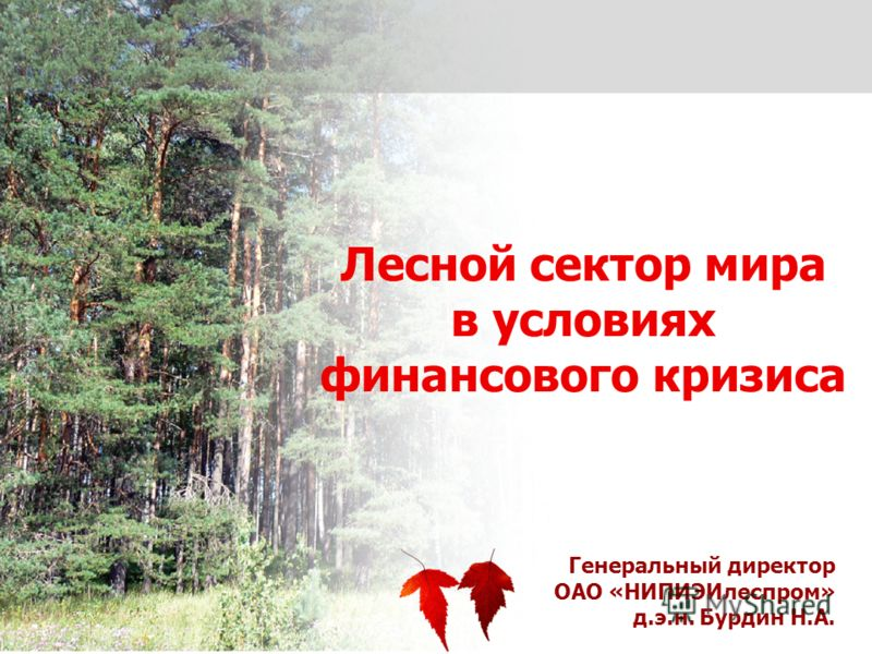 1 Генеральный директор ОАО «НИПИЭИлеспром» д.э.н. Бурдин Н.А. Лесной сектор мира в условиях финансового кризиса