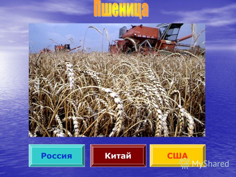 РоссияСШАКитай