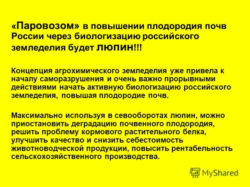 « Паровозом» в повышении плодородия почв России через биологизацию российского земледелия будет люпин !!! Концепция агрохимического земледелия уже привела к началу саморазрушения и очень важно прорывными действиями начать активную биологизацию россий