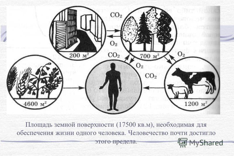 Площадь земной поверхности (17500 кв.м), необходимая для обеспечения жизни одного человека. Человечество почти достигло этого предела.